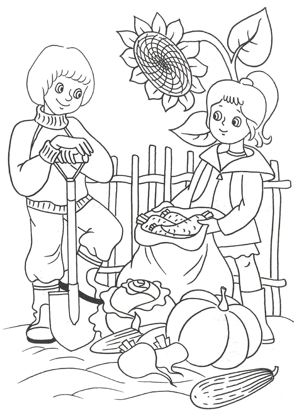 Hier können Sie Ausmalbilder – Ernte kostenlos ausdrucken Malvorlagen für Kinder