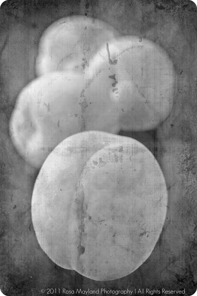 Baked Apricots Fruits B&W text bis