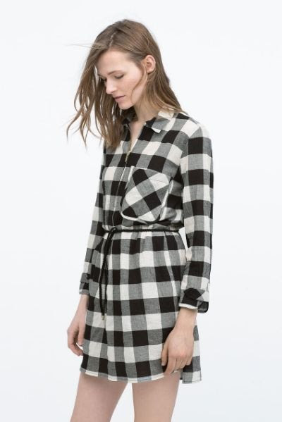 Zara Checked Shirtdress