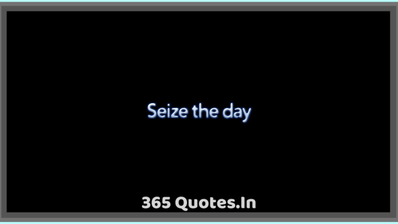 Seize The Day 365 Quotes