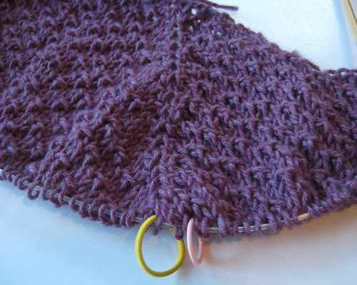 plum with stitch markers