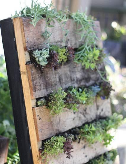 Jardín vertical casero