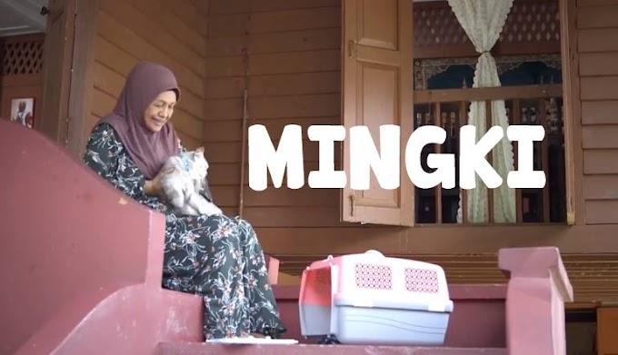 SINOPSIS MINGKI (TV3)