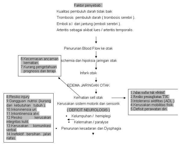 CVA / stroke (INFARK)