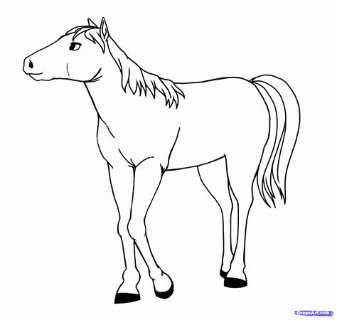 draw anime horses step  step pets animals