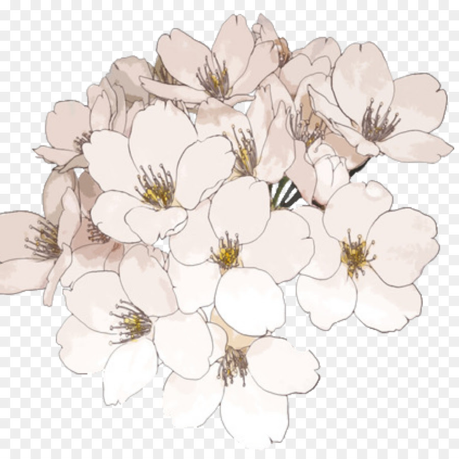 Download Aesthetic Flower Drawing Png Png Gif Base