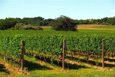 baiting hollow farm vineyard weddings  parties