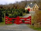 Holiday Decorating Ideas for Barn Homes and Others
