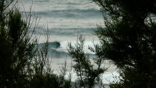 olas surf surfing waves surfboard swell playa beach sea mar oceano ocean arena