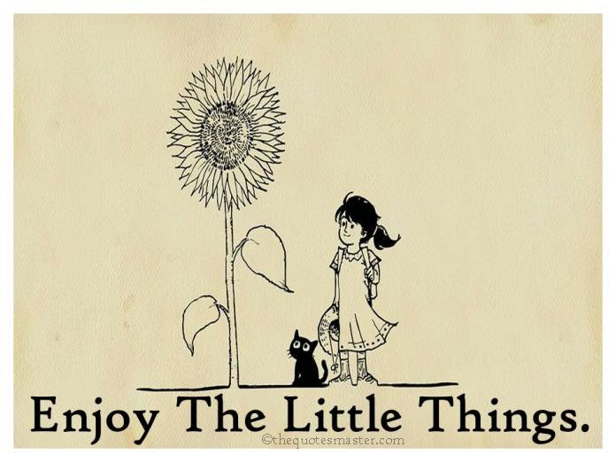 Enjoy The Little Things In Life Quotes The Quotes Master