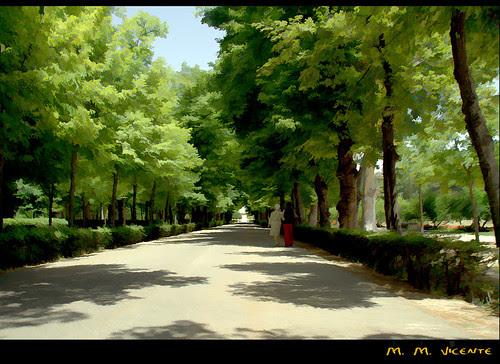 jardines del Príncipe. Aranjuez