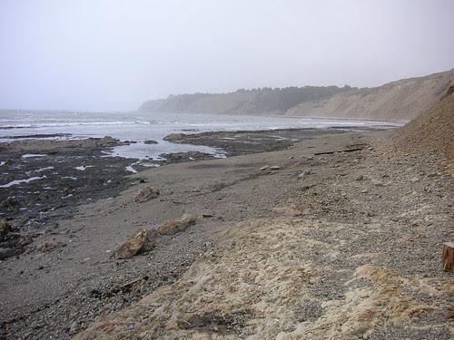Duxbury Reef at High Tide by blmurch.