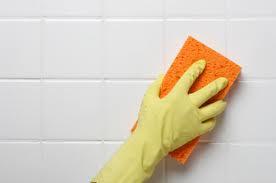 Green Cleaning..ทำความสะอาดบ้านแบบปลอดสารพิษ