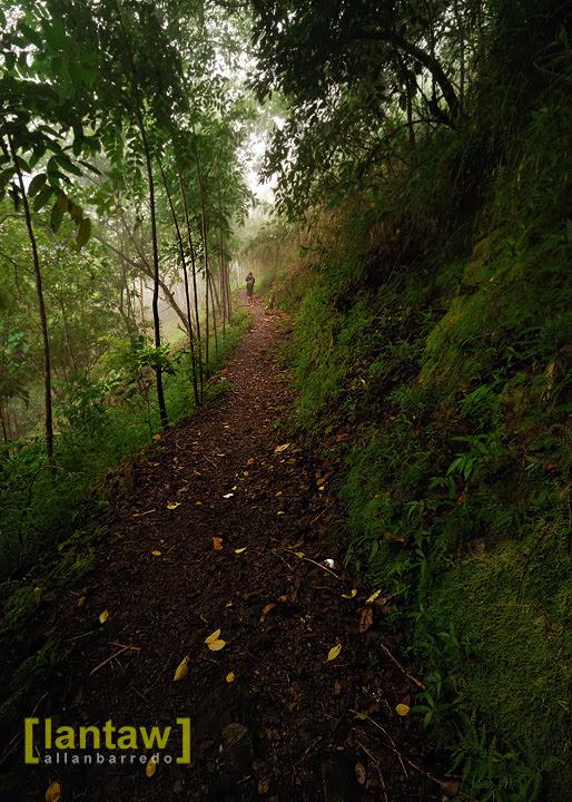 Trail to Imugan Falls 2