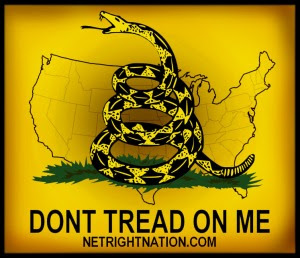 NetRight Nation Gadsden Flag