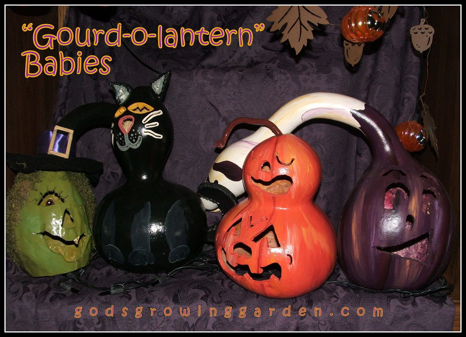 Gourd-o-lantern Babies by Angie Ouellette-Tower for godsgrowinggarden.com photo 005_zpsa1f97c03.jpg