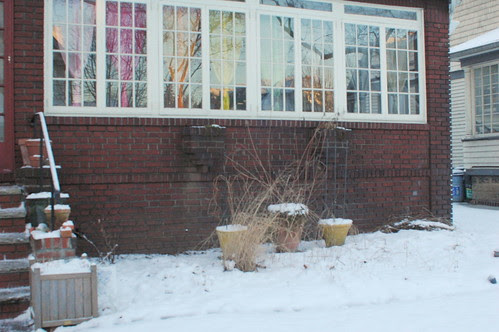 Front Garden, January 2007