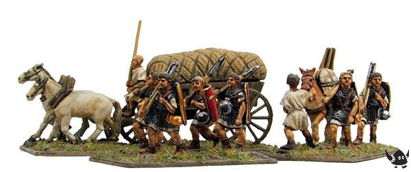 Marchers, wagons and mules