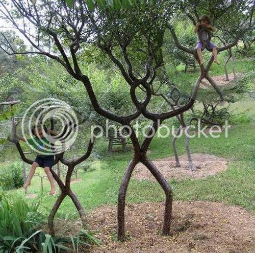 pokok pelik 11 [Gambar Pelik] Koleksi Gambar Pokok Pelik