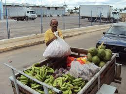 Decretos beneficiam pequenos agricultores (foto reprodução)