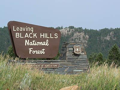 leaving black hills forest.jpg