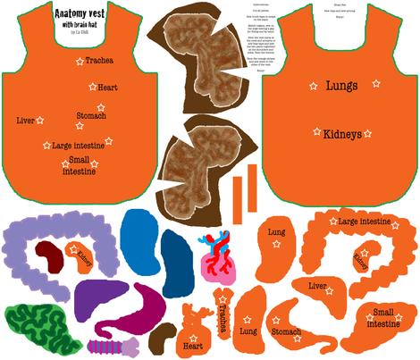 Anatomy Vest