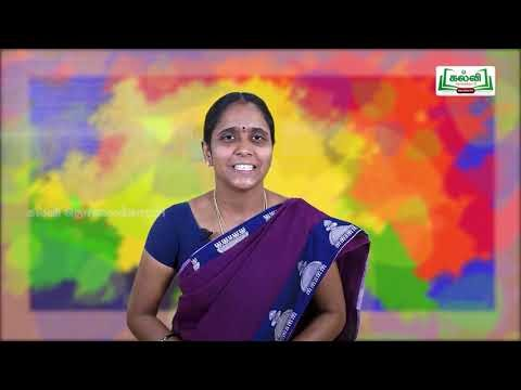 3rd Social Science Bridge Course விடுதலை ஊராட்சி நாள் 7, 8 Kalvi TV
