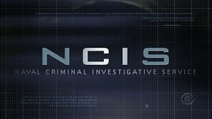 Main logo/inter-art for the television series ...