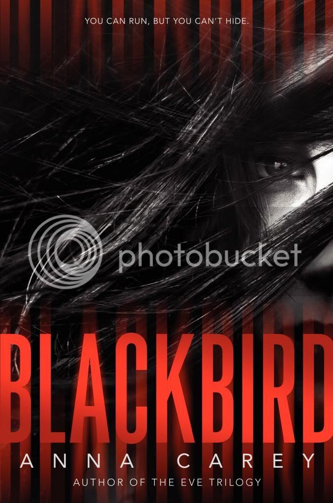 https://www.goodreads.com/book/show/20483089-blackbird