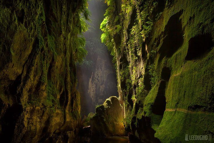 One of natures beautiful buildings...Blue Mountains Australia