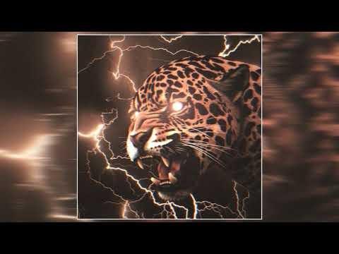 MUSO SOUP ÁLBUNS #2: The Spectral Quiet, Riot Sun, Blackbird Sons, Flying Rabbit, FiveSidedDice e mais com EPs e álbuns lançados dentro de estilos como post/classic/punk/stoner rock e psicodélico