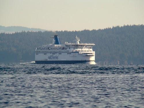 2008-10-11 Portland Island 079