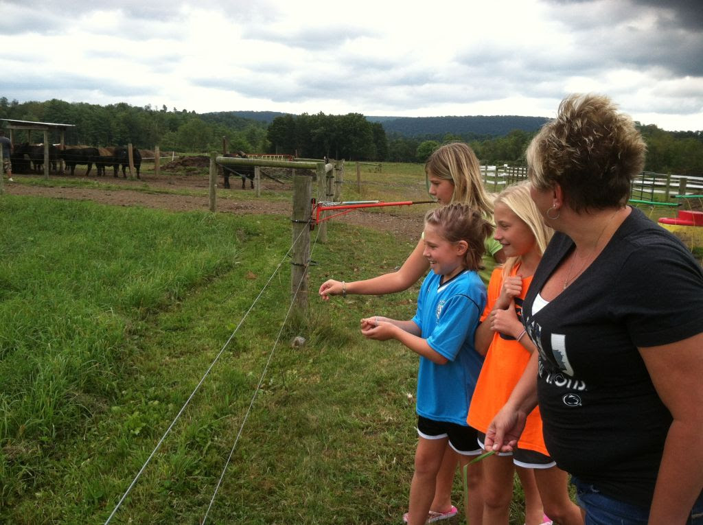 We also learned about electric fences. We worked on proving the idea that a short blade of grass laid on the electric fence will give you a shock.