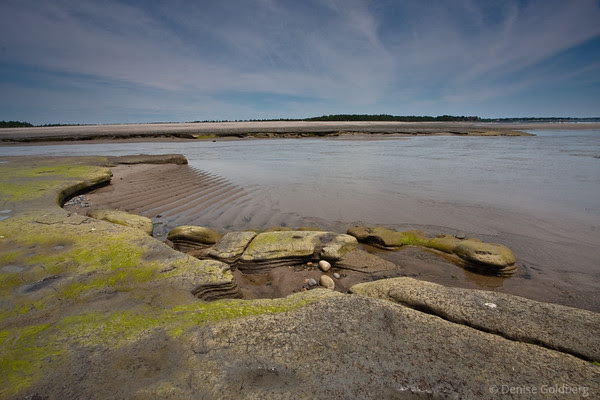 low tide, emerging shapes