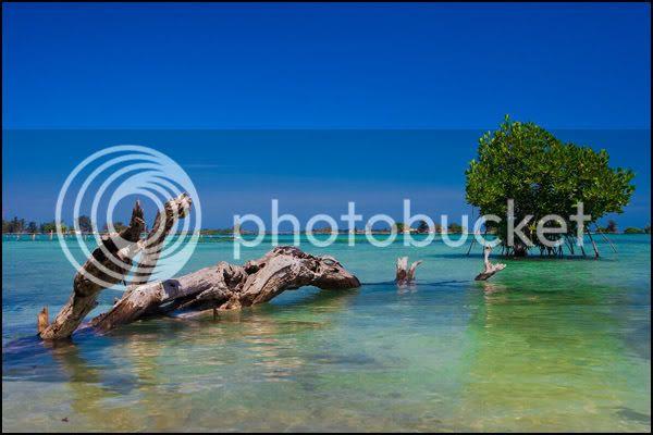 http://i8.photobucket.com/albums/a7/matsichan/LN-Pramuka/IMG_7172.jpg