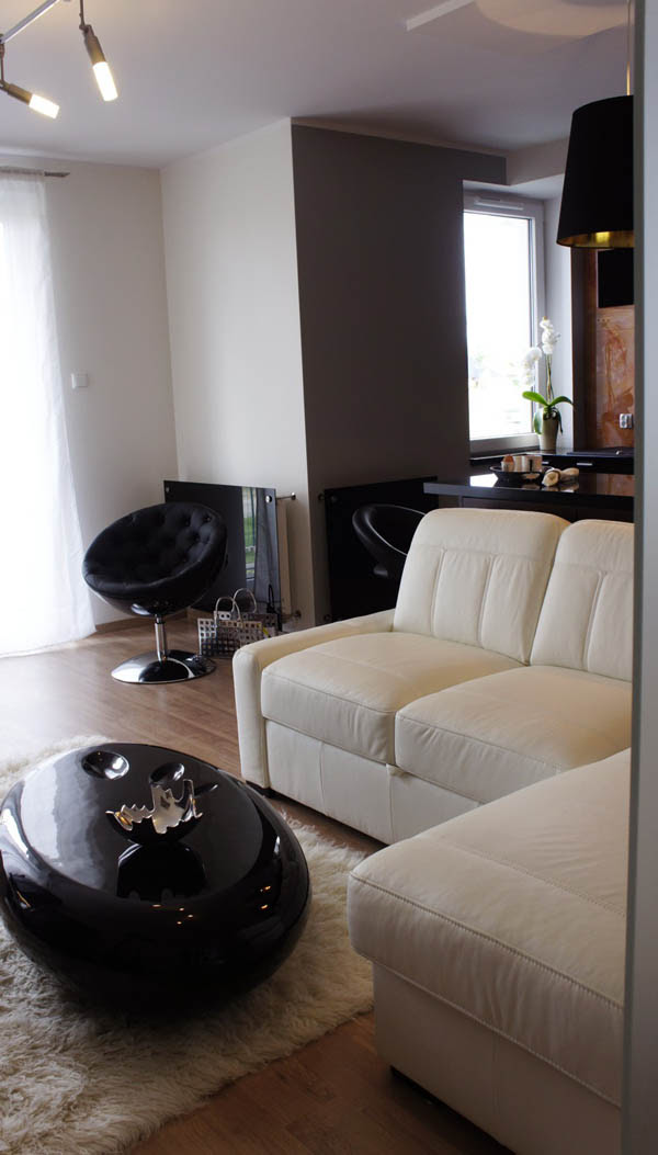 A compact 34 square meter apartment with an elegant ...