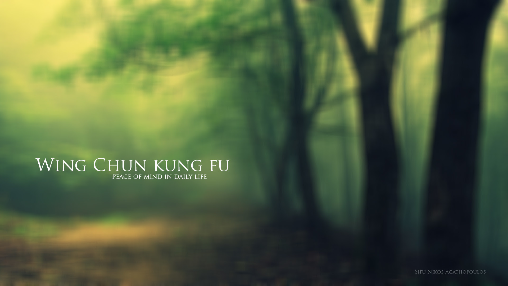 Wing Chun Kung Fu Wallpaper