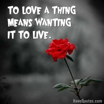 To Love A Thing Means Wanting It To Quote Life Quotes Love Quotes