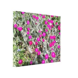 Purple pink flowers canvas prints