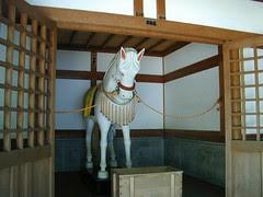 20 White Horse