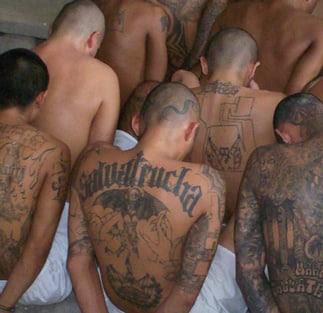 MS-13 gang members