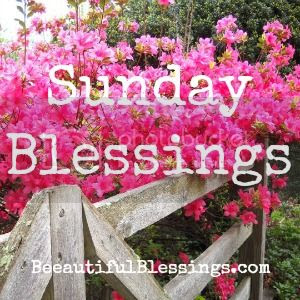Beeautiful Blessings Sunday Blessings