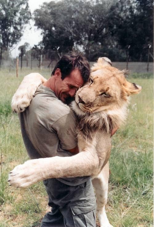 Кевин Ричардсон обнимается со львом. Фото