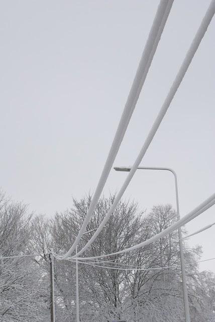 snow in rye DSC_3254_1
