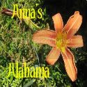 Anna's Alabama