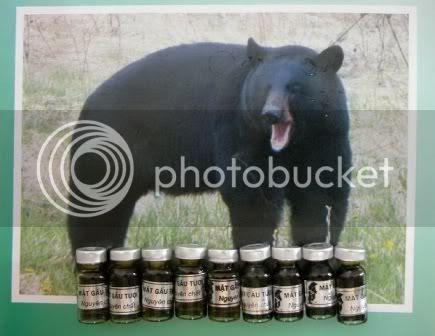 Mật gấu HCM hà nội tươi trị ung thư, mật gấu cách dùng, cách phân biệt mật gấu thật giả