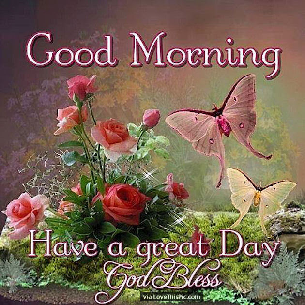 Good Morning And God Bless Have A Great Day Pictures Photos And
