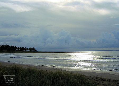 grey sky :: grå himmel