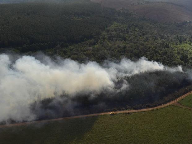 Segundo bombeiros, fogo atinge uma área grande da fazenda (Foto: Araupel/ Arquivo)