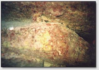 """Каменный клин (в центре) находящийся под одной из плит """"Дороги Бимини""""."""